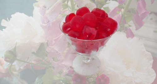 Easy Recipes  Jello Beans- The Perfect Snack