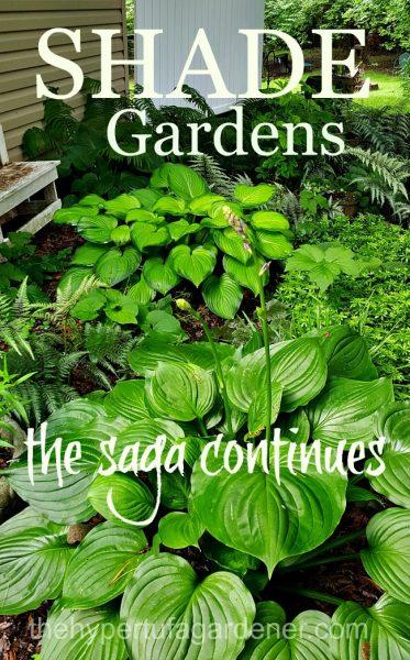 Shade Gardens from The Hypertufa Gardener