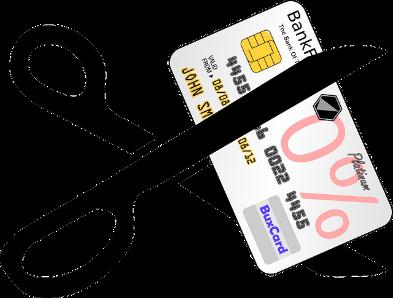 credit card seduction 2 - the hypertufa gardener.com