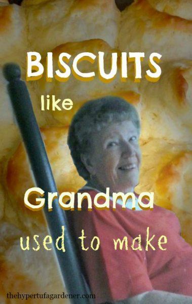 Biscuits - The Hypertufa Gardener