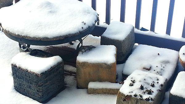 Buried in the Ice Snow - The Hypertufa Gardener