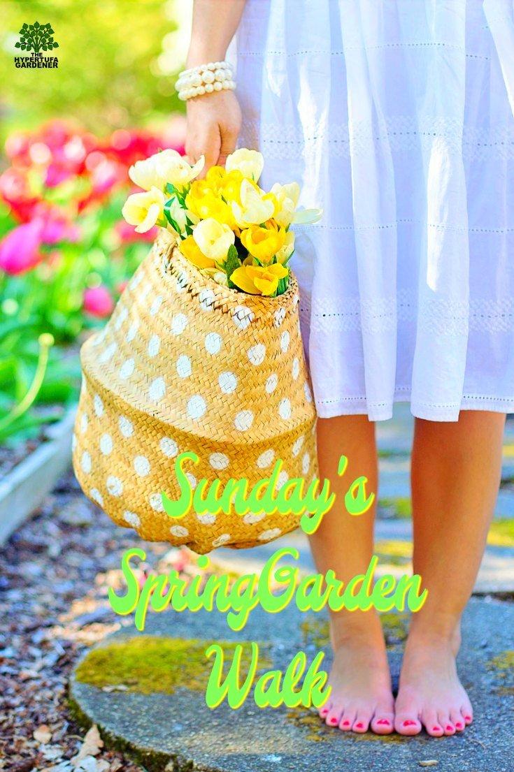 Spring Garden Walk - I can't wait for spring so that I can enjoy a Sunday's Garden Walk. So exhilarating!