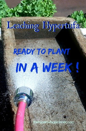 Check out the post and the video explaining how to Quick Leach your new hypertufa pots. I have used this method for years and have had no problems with alkalinity.