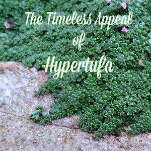 Appeal of Hyper tufa-TheHypertufaGardener