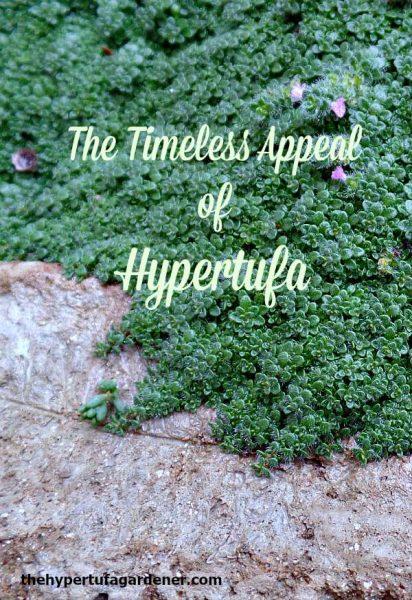 Appeal of Hypertufa-TheHypertufaGardener