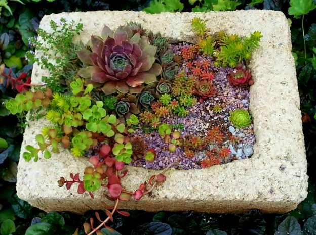 Favorite Hypertufa - The Hypertufa Gardener