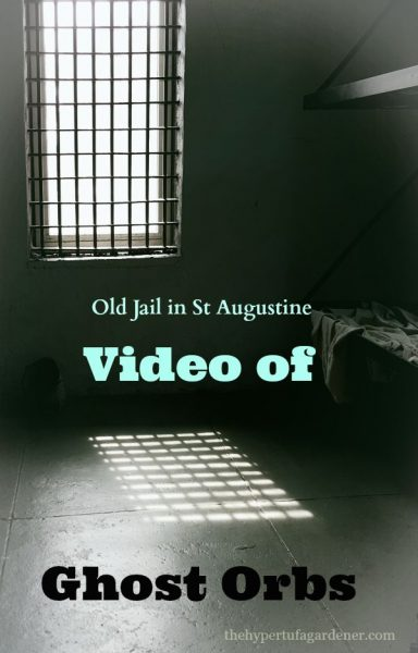 Haunted St Augustine Jail - Video and Post on The Hypertufa Gardener