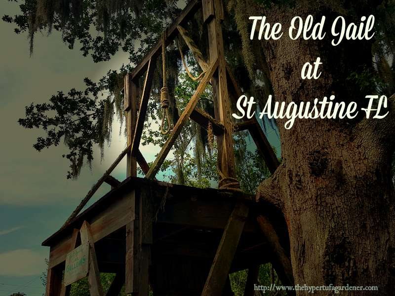 The Old Jail in St Augustine FL - The Hypertufa Gardener