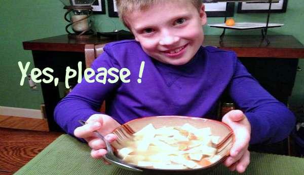 Easy Meals Chicken Noodle Soup 2 - The Hypertufa Gardener