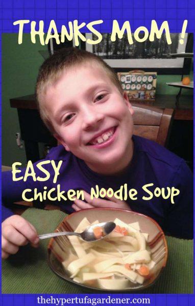 Easy Meals Chicken Noodle Soup - The Hypertufa Gardener