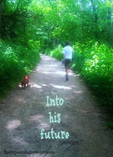 Into-His-Future - The Hypertufa Gardener