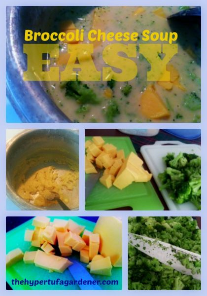 Easy Broccoli Cheese Soup - Perfect for Fall