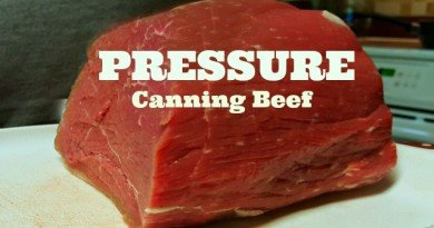 Pressure Canning Beef: I Did It and It's Easy