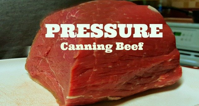 Pressure-canning-beef - from The Hypertufa Gardener