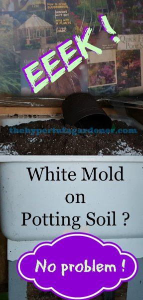 bin full of soil