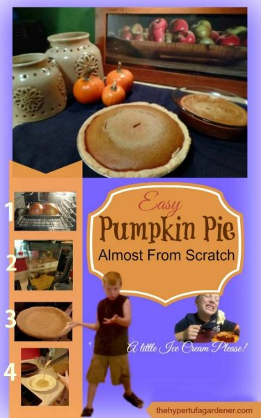 Almost from Scratch Homemade Pumpkin Pie - The Hypertufa Gardener