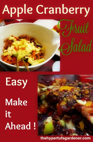 Apple Cranberry Fruit Salad - The Hypertufa Gardener