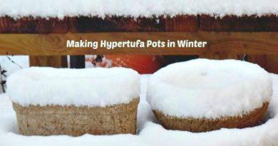 Making-Hypertufa-Pots-in-Winter-Yes-I-do!-The-Hypertufa-Gardener