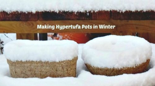Make Hypertufa Pots in Winter? Yes!