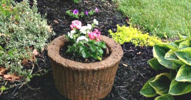 Let's Try A Hypertufa Planter from a Hose Storage Basket!