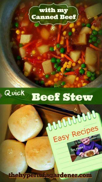 Quick Beef Stew in 30 minutes - The Hypertufa Gardener