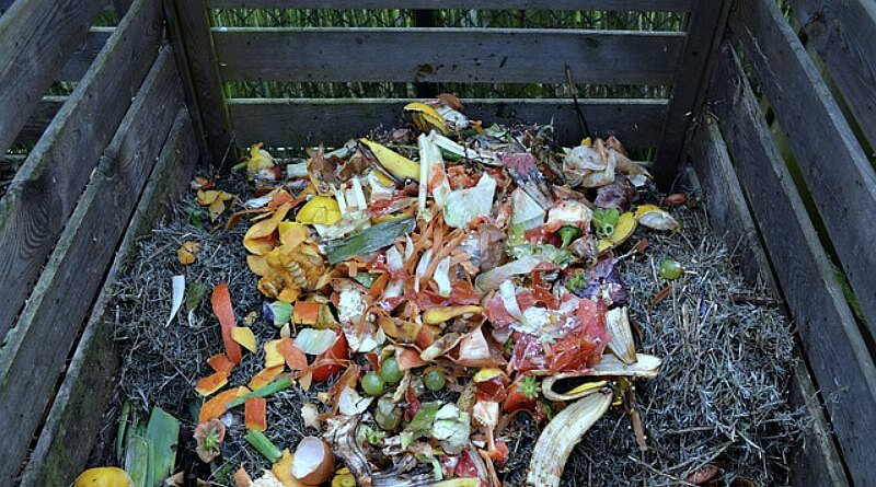 Backyard Composting in the Wintertime - The Hypertufa Gardener