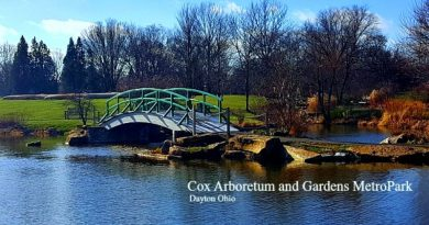 Cox Arboretum and Gardens - The-Hypertufa-Gardener