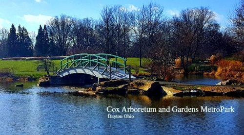 A Hypertufa Lover's Heaven – Cox Arboretum