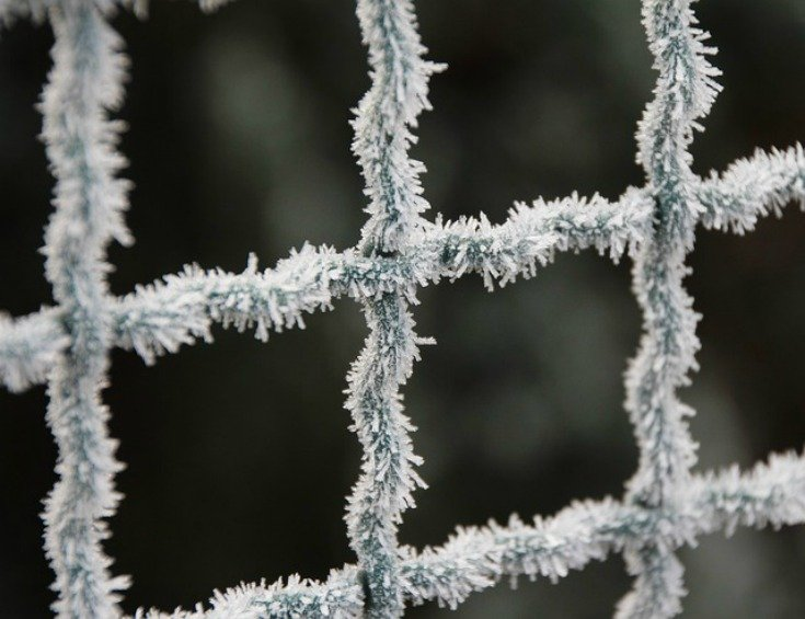 Frost on a chain link fence