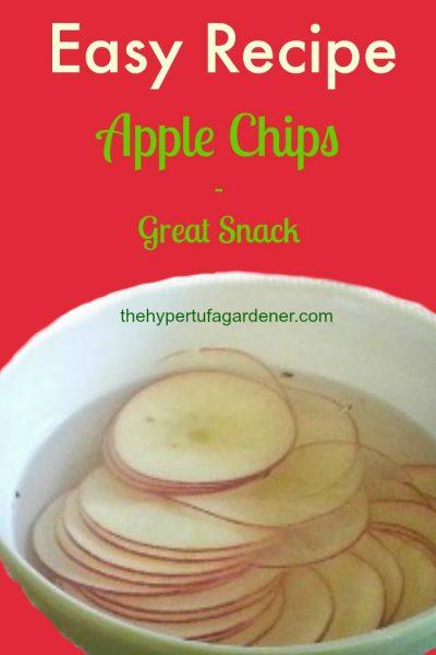 Healthy Apple Chips - The Hypertufa Gardener
