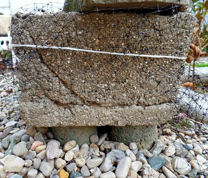 Keeping squirrels out of the garden planters the - How to keep squirrels from digging in garden ...