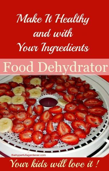 Food Dehydrator for great food(1)(1)