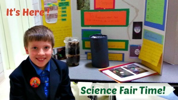 Science Fair Projects - The Hypertufa Gardener
