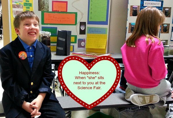 Science Fair in Love - The Hypertufa Gardener