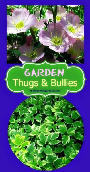 Thugs and Bullies in the Garden - THG