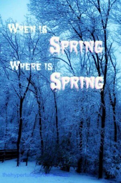 When-Spring-hypertufa-gardener-300x456(1)(1)