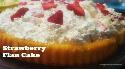 Easy Recipes:  Make-Ahead Fruit Flan