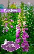 Enchanting beautiful foxglove-hypertufa-gardener