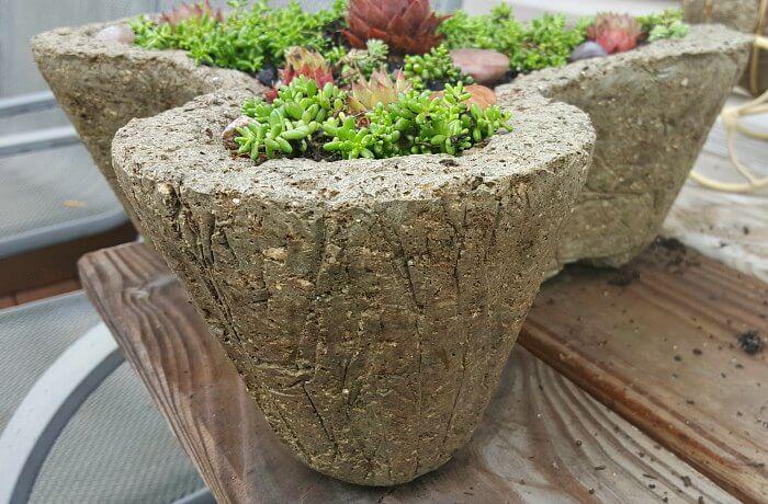 Shamrock hypertufa molds