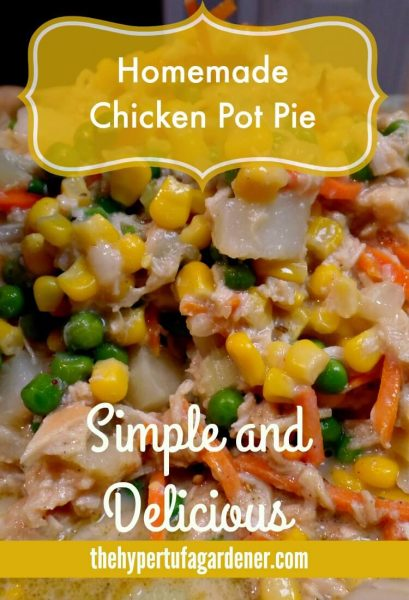 photo of chicken pot pie