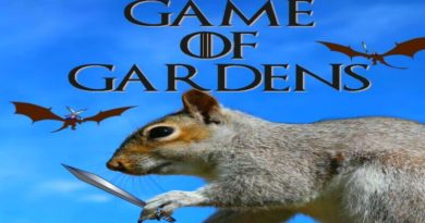 Game of Gardens - Not Really