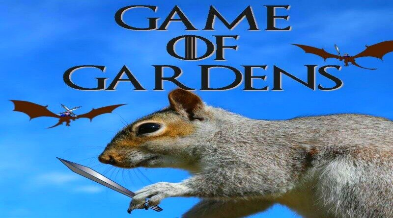 Game of Gardens – And I Am The Khaleesi!
