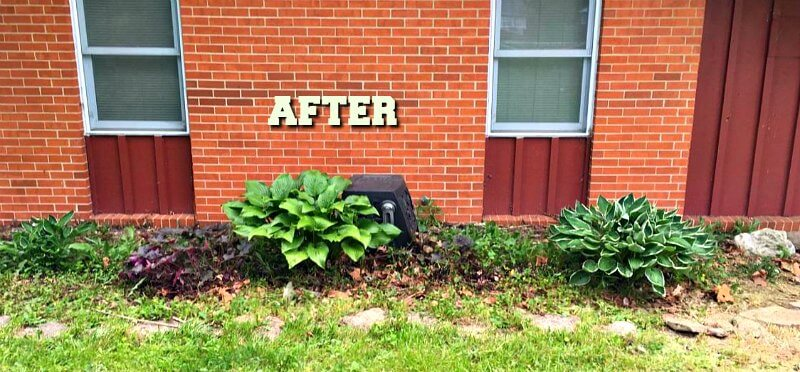 Gardeners Code - After Weed Pull