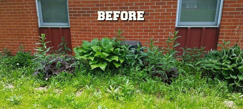 Gardeners Code Before with weeds