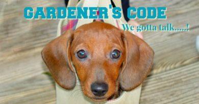 Gardeners Code Doggie