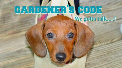 Gardener's Code: I Can't !