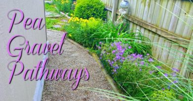 Pea Gravel Pathways – Oh Our Aching Backs!