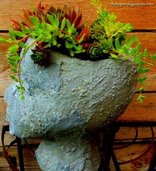 My Head Planter - I just covered a wig form with slurry.