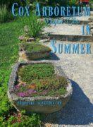 Rock Garden at Cox Arboretum Dayton Ohio