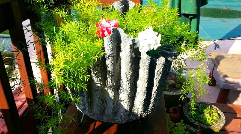 Draped Hypertufa planted up with Fern